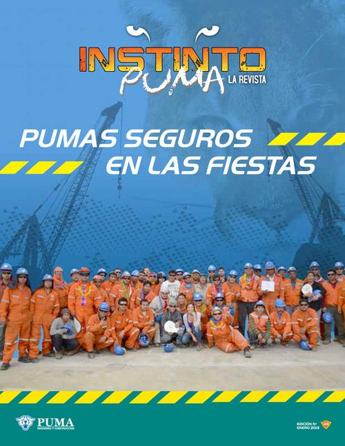 Revista Instinto Puma Nº49